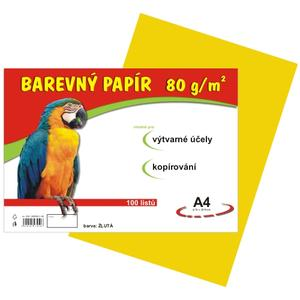 Barevný papír A4/100/80g