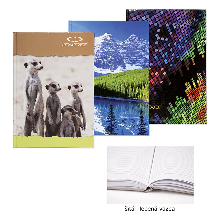 Kniha zázn.A4 200l.linka